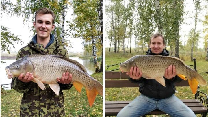 Под Новосибирском рыбаки поймали 8-килограммового карпа — смотрите, какой он огромный
