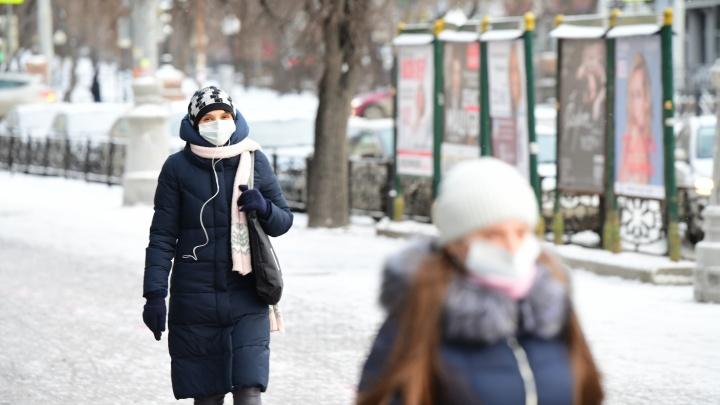 369 новых случаев: Свердловская область побила антирекорд по количеству заболевших COVID за сутки