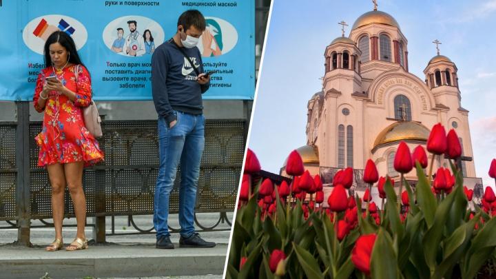 Коротко о главном: рекордное число заболевших и продление режима самоизоляции в Свердловской области