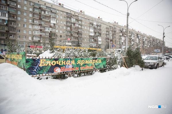 Базары откроются во всех районах города