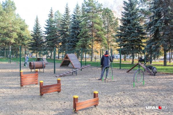 Площадка оборудована мостиками и преградами для развлечения собачек