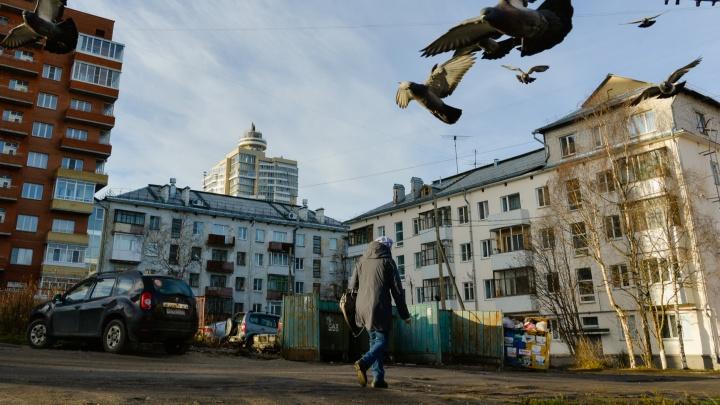 Активисты показали на карте, где в Архангельской области внедрили раздельный сбор мусора
