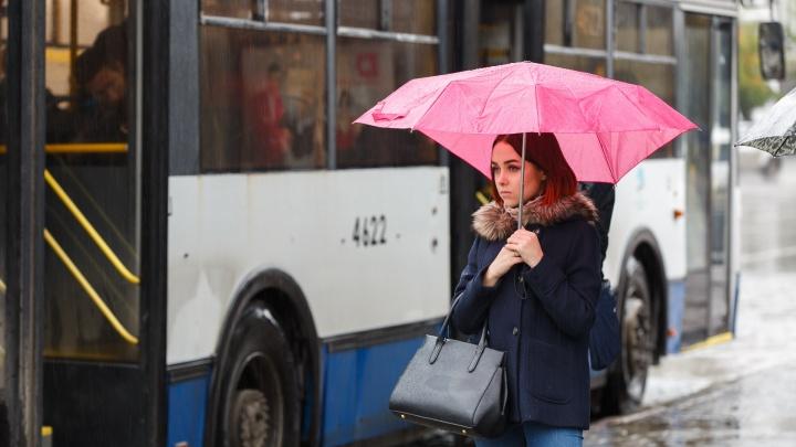 В Волгоградскую область пришли сильные дожди и ветер