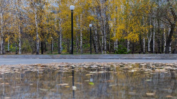 МЧС предупреждает жителей Прикамья о сильных дождях в воскресенье