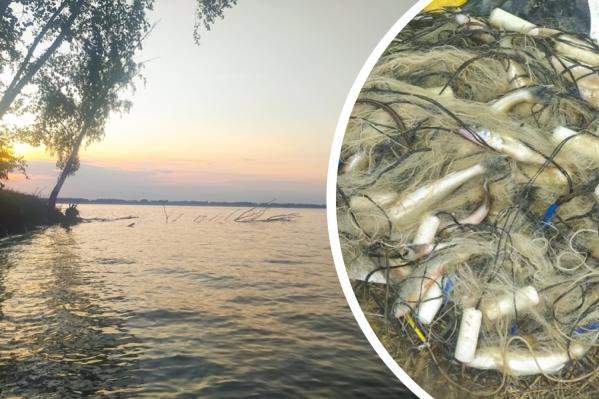Рыбак успел выловить 57 рыб