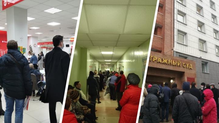 9 самых больших очередей Новосибирска — люди часами стоят в МФЦ, больницы и даже в суд