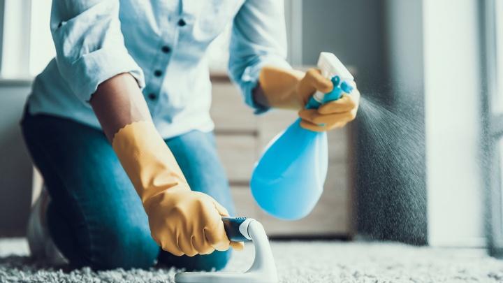 В новый год с чистым домом: как привести жильё в порядок и избавиться от неприятных «соседей»