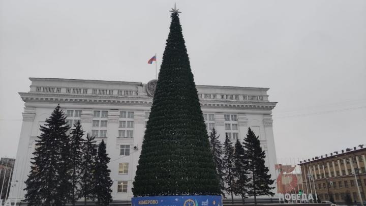 В Кемерово на площади Советов собрали ель за 18 млн. Мэрия рассказала, будет ли там ледяной городок