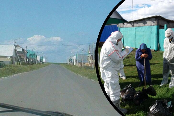 Власти обещают помочь тюменским фермерам, чьих кур и гусей убили из-за птичьего гриппа