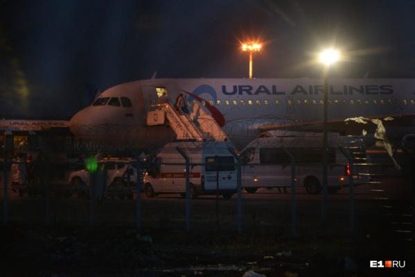 У самолёта туристов ждали медики и автобусы, на которых людей увезли в обсерватор