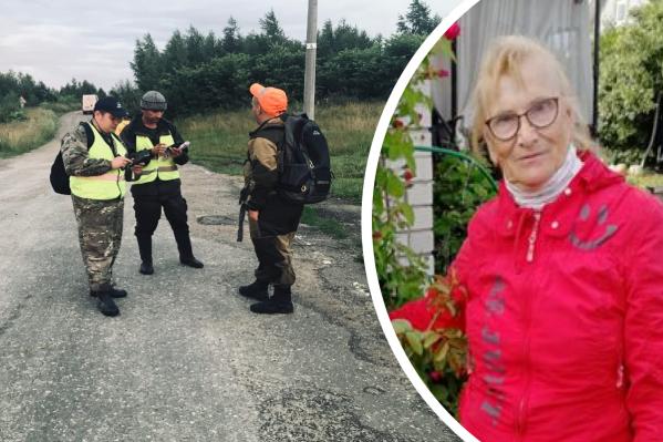 Добровольцы осмотрели дорогу и деревню, где по камерам видели пенсионерку