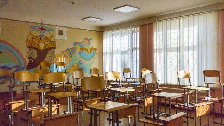 В Кургане из-за морозов отменили занятия для школьников с 1-го по 9-й классы
