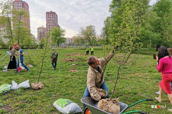 В парке УрГУПС высаживают деревья