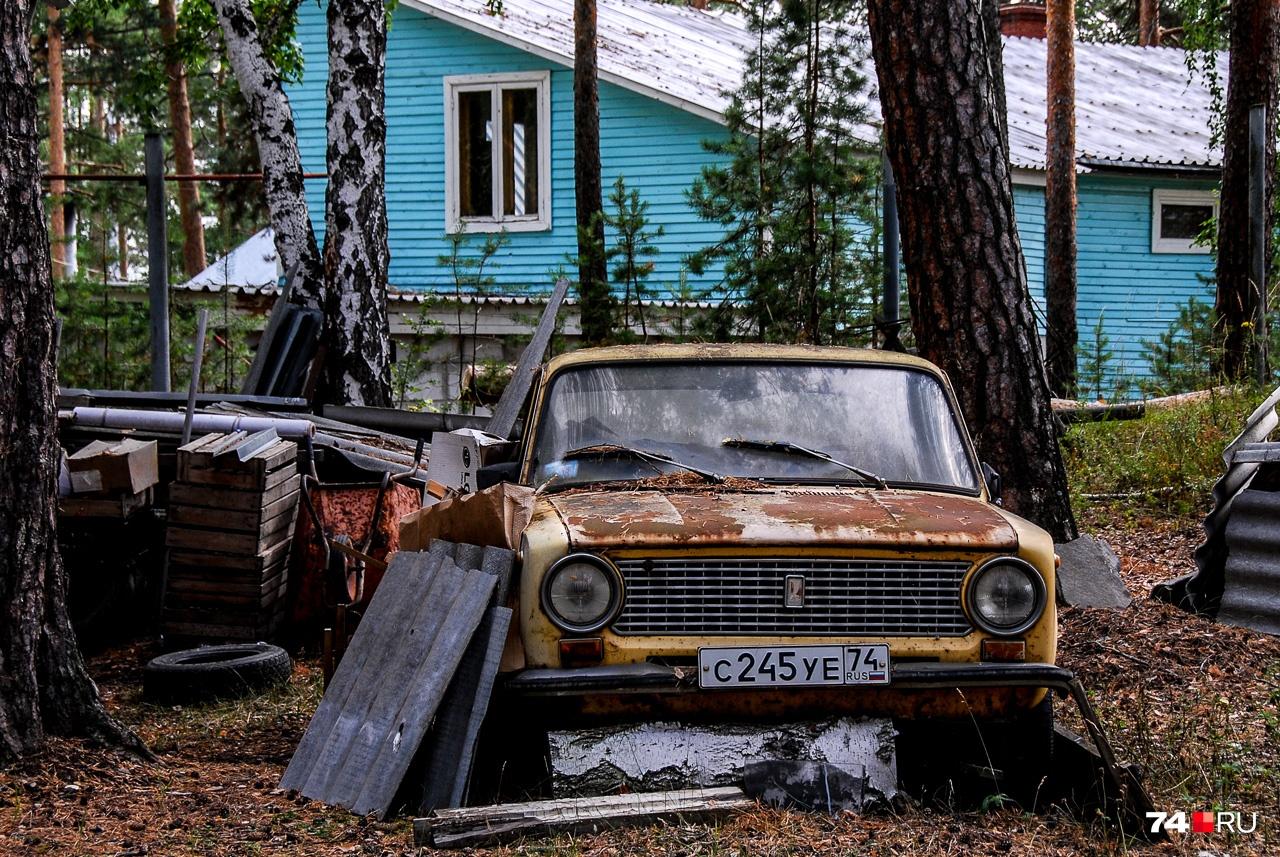 Окрестности дома Тимофеева-Ресовского: здесь идёт другая жизнь