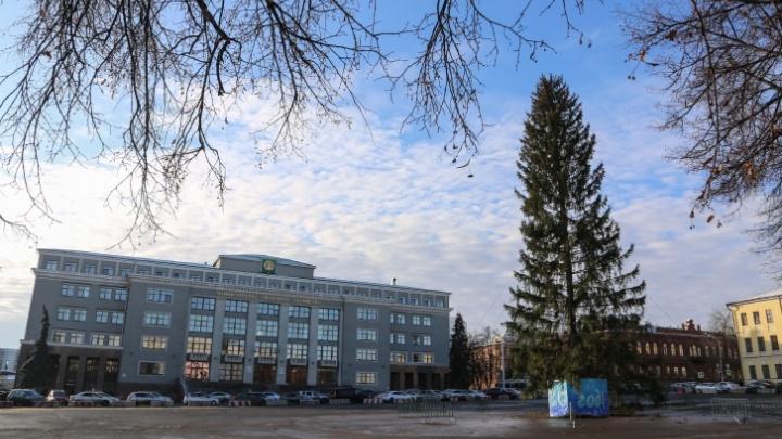 Уфа потратит почти 19 млн рублей на пиксельную елку на Советской площади