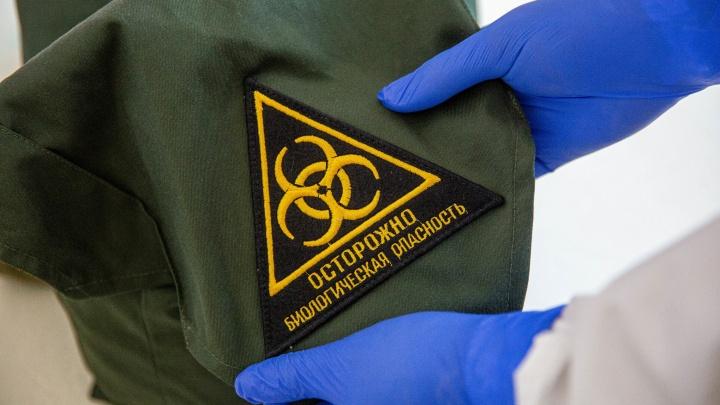 Роспотребнадзор составил план отмены карантина по коронавирусу