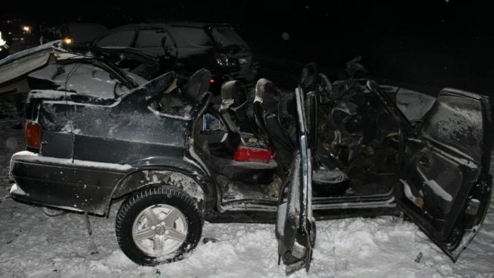 Два человека погибли в ДТП на трассе в Новосибирской области