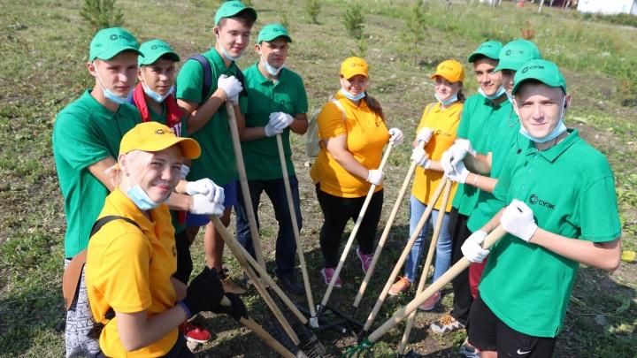 Волонтеры СУЭК взяли шефство над Садами памяти в шахтерских городах