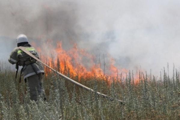 Сейчас на север края и в Приангарье стягивают силы для борьбы с лесными пожарами