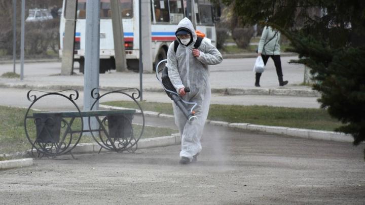 Шадринская студентка передала коронавирусную инфекцию своей маме: полиция проводит проверку