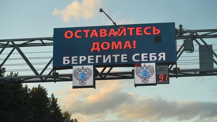 В Ярославской области новый рекорд по заболевшим. Всё о коронавирусе - онлайн