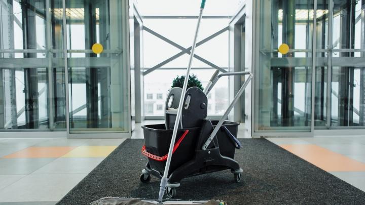 Генеральная уборка: кто поможет навести чистоту предпринимателям Архангельска