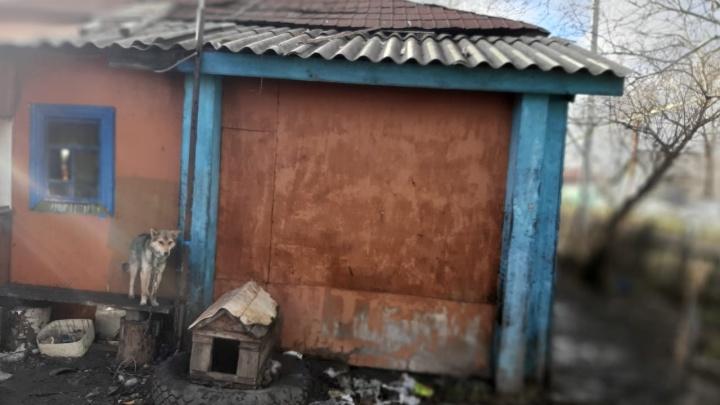 «Мать пришла — сразу в слезы»: что известно о каргатской семье, в которой погибли трое детей