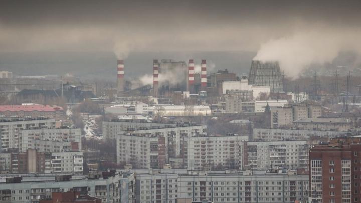 «Навозом воняет хуже, чем в деревне»: новосибирцы снова жалуются на невыносимую вонь