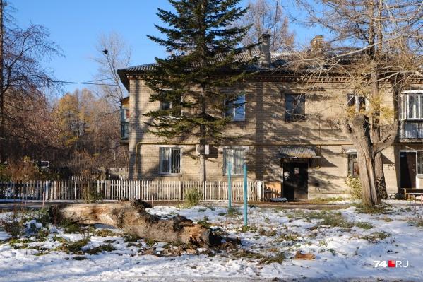 Сухое дерево стояло во дворе дома на улице Мебельной