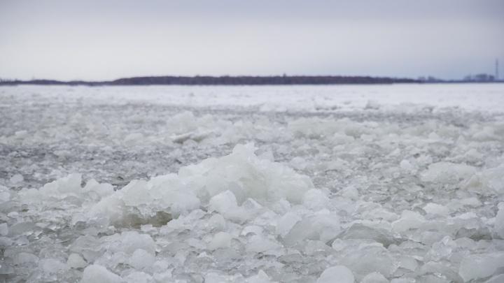 «Вело рыболовный промысел»: Александр Цыбульский прокомментировал гибель судна у Новой Земли