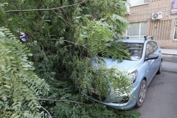 В Ростове спрогнозировали сильный ветер и обмеление Дона
