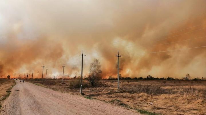 В Кудряшовском поселке Новосибирской области горят поля и дачи — очевидцы сняли пожар