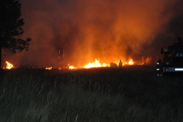Огонь распространился на огромной территории лесничества в Брединском районе