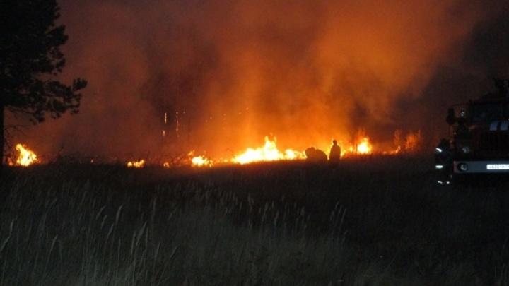 В Челябинской области более 130 спасателей тушат крупный лесной пожар