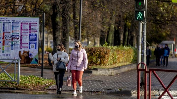 «Ковид лютует по ночам?»: ярославцев возмутили новые коронавирусные правила от Роспотребнадзора