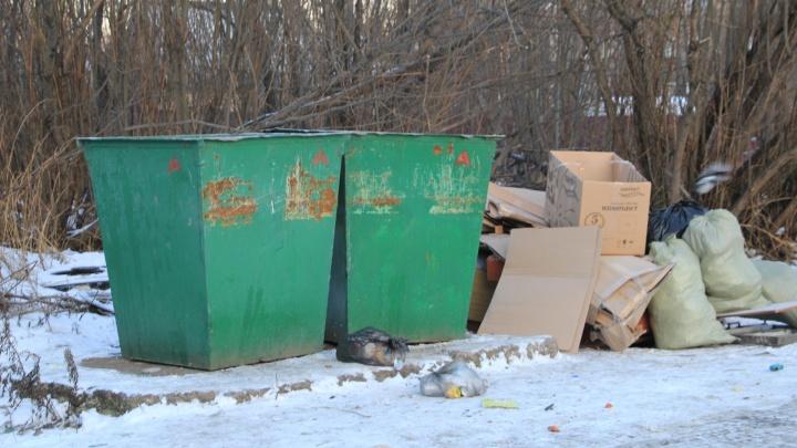 Что считается крупногабаритным мусором и кто его должен вывозить из дворов северян?