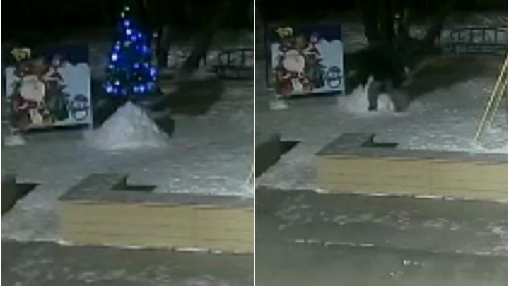 Еще один похититель Рождества: в Тобольске мужчина украл елку на детской площадке