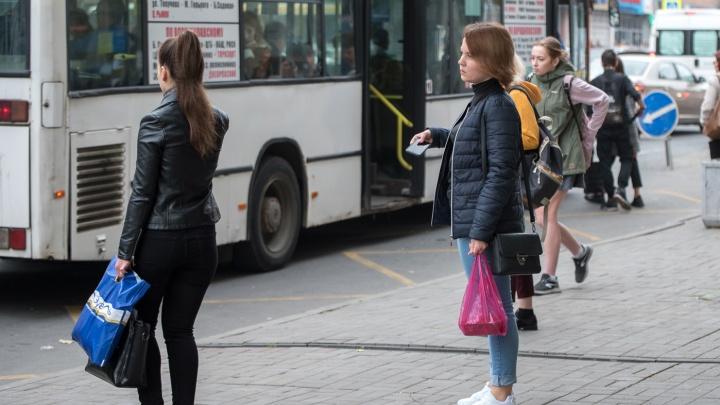 Ростовские перевозчики переставят терминалы оплаты так, чтобы они были доступны пассажирам