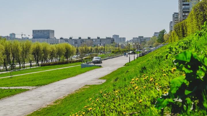 Тепло и дождливо: синоптики рассказали о погоде в Прикамье на выходные