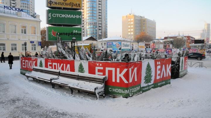 В Екатеринбурге открываются елочные базары. Показываем, где купить новогоднее дерево