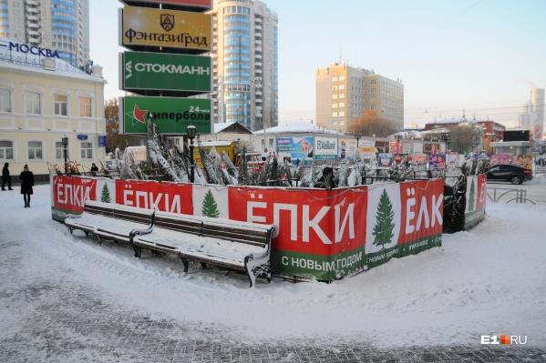 Елочные базары будут открываться постепенно с 17 декабря