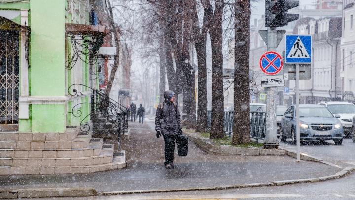 В выходные в Прикамье ожидается ветер и мокрый снег