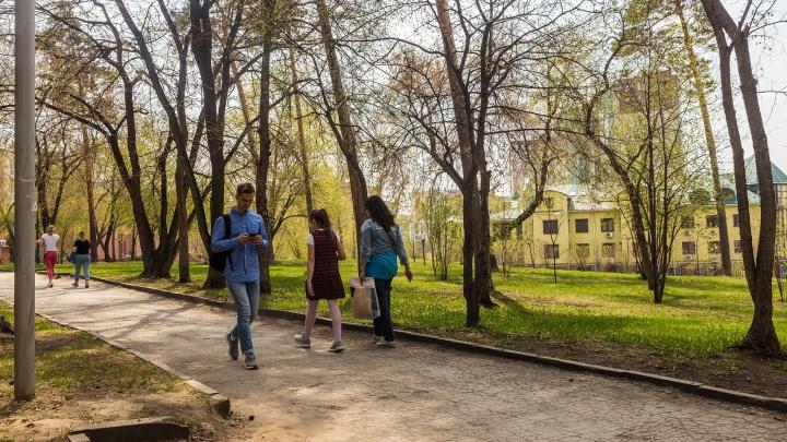 К Новосибирску приближается летнее тепло: прогноз погоды на грядущие праздничные выходные