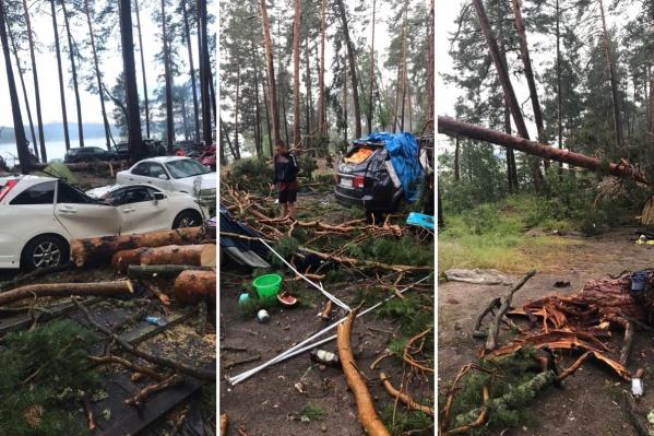 Кадры последствия урагана на озере Маслеево в прошлом году