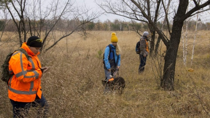 В лесах Омской области потерялась женщина — на её поиски выехали волонтёры