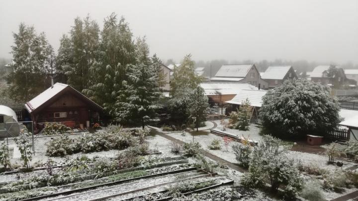 Зима близко: в Ленском районе выпал первый снег