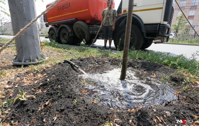 В Челябинской области из-за засухи ввели режим чрезвычайной ситуации