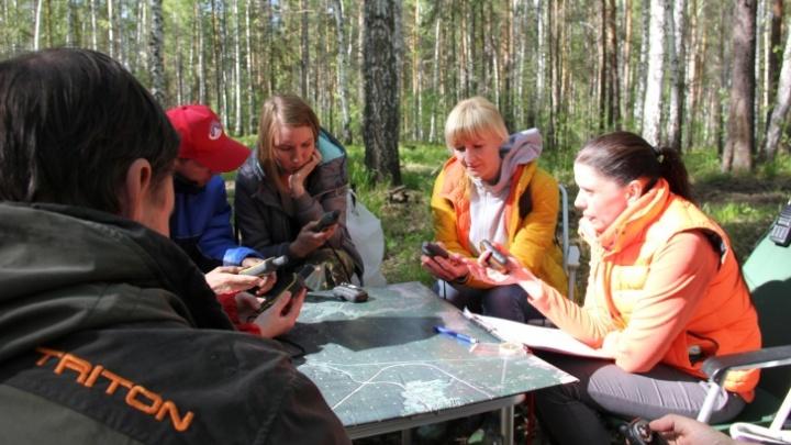 В Свердловской области на этой неделе нашли троих грибников, пропавших в лесу
