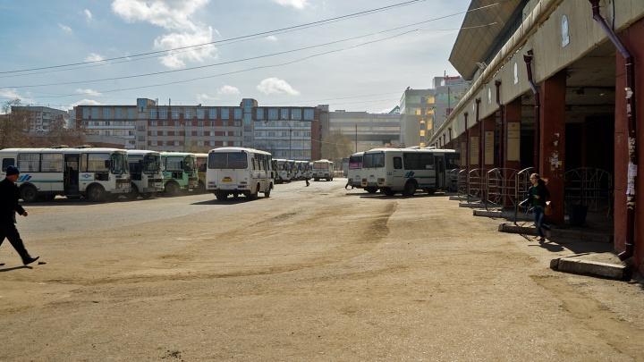 Омский автовокзал продлил отмену 18 автобусных рейсов — список