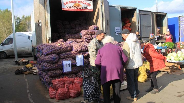 Архангельские предприниматели могут бесплатно получить места для торговли на Маргаритинской ярмарке